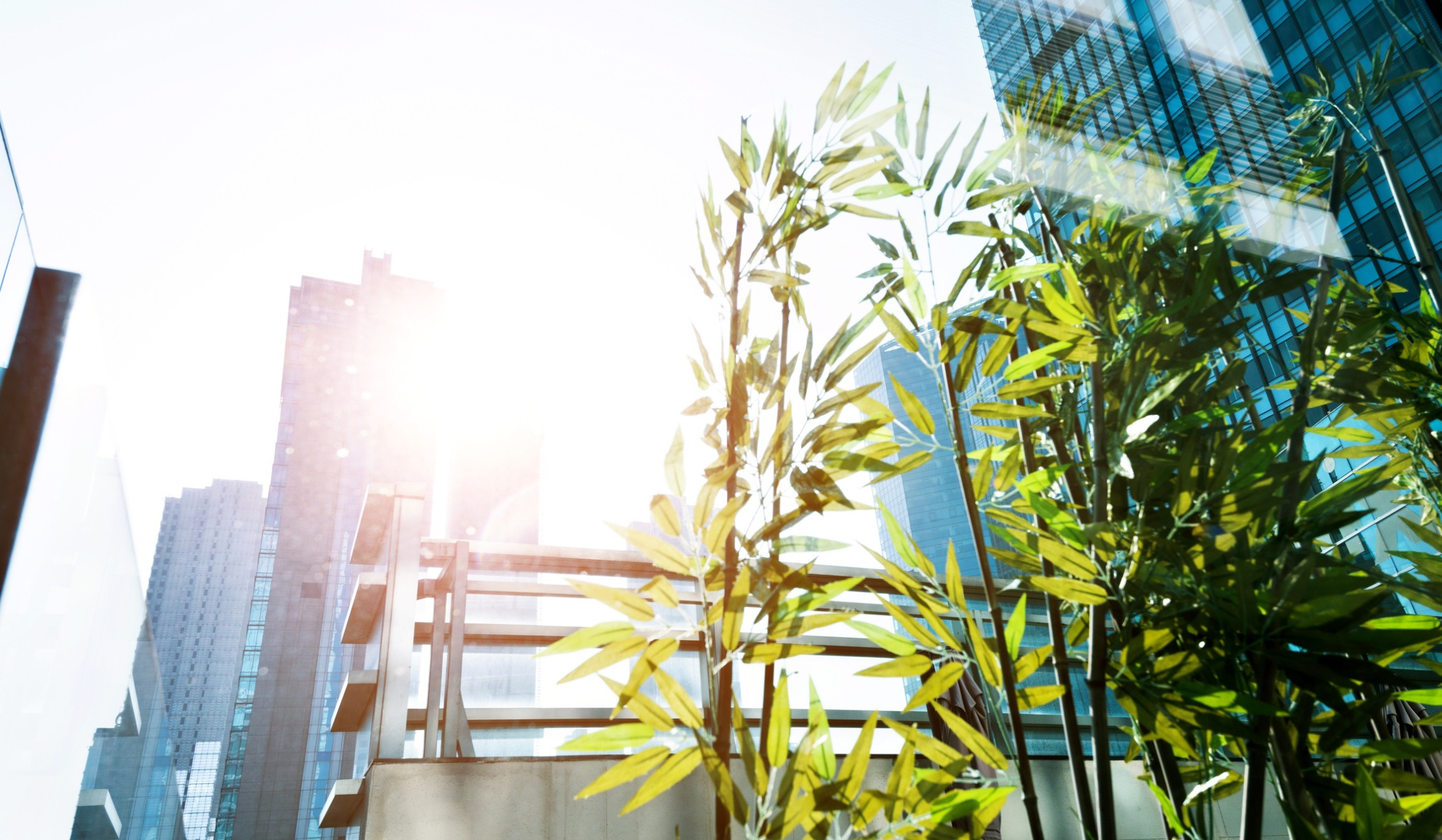 How a VoIP System Makes Your Hotel More Environmentally Friendly